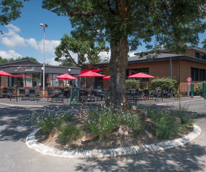 bar-restaurant_20181118_1879296081